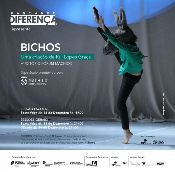 Os Bichos | Espetáculo do Grupo Dançando com a Diferença